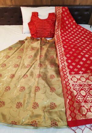 Incredible Red & Golden Banarasi Brocade Lehenga Choli Design Online