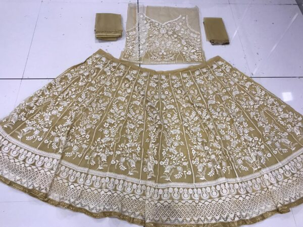 Lovely Chiku Colored Net With Embroidered Work Lehenga Choli